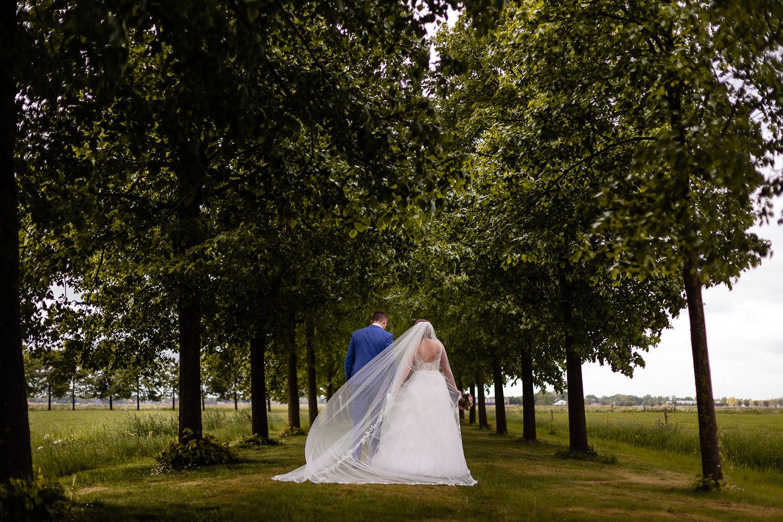 Bruidspaar loopt weg door een bomenlaan